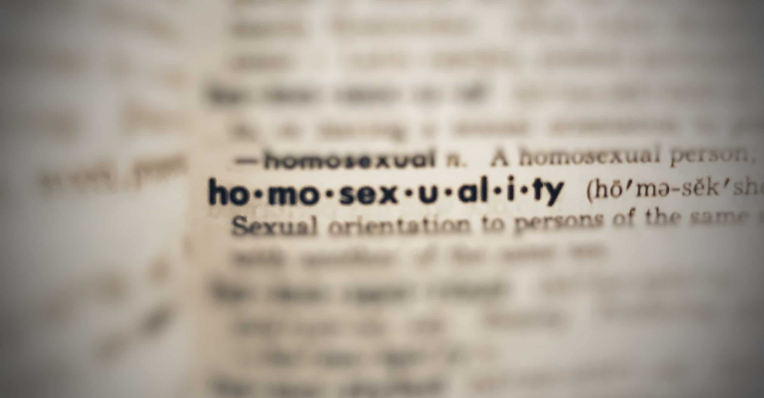 Dictionary entry: homosexuality